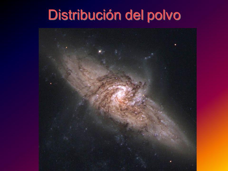 Distribución del polvo