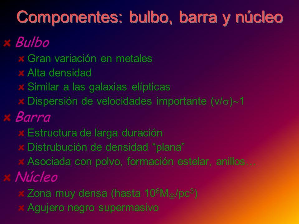 Componentes: bulbo, barra y núcleo Bulbo Gran variación en metales Alta densidad Similar a las galaxias elípticas Dispersión de velocidades importante