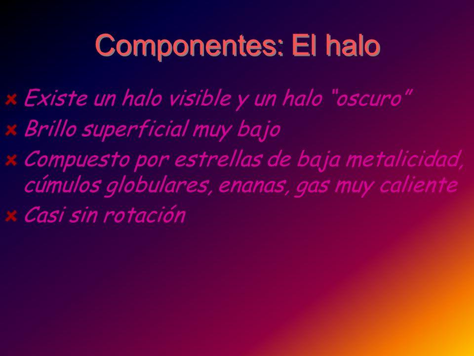 Componentes: El halo Existe un halo visible y un halo oscuro Brillo superficial muy bajo Compuesto por estrellas de baja metalicidad, cúmulos globular
