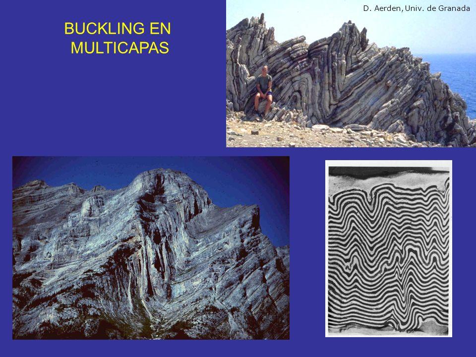 BUCKLING EN MULTICAPAS D. Aerden, Univ. de Granada
