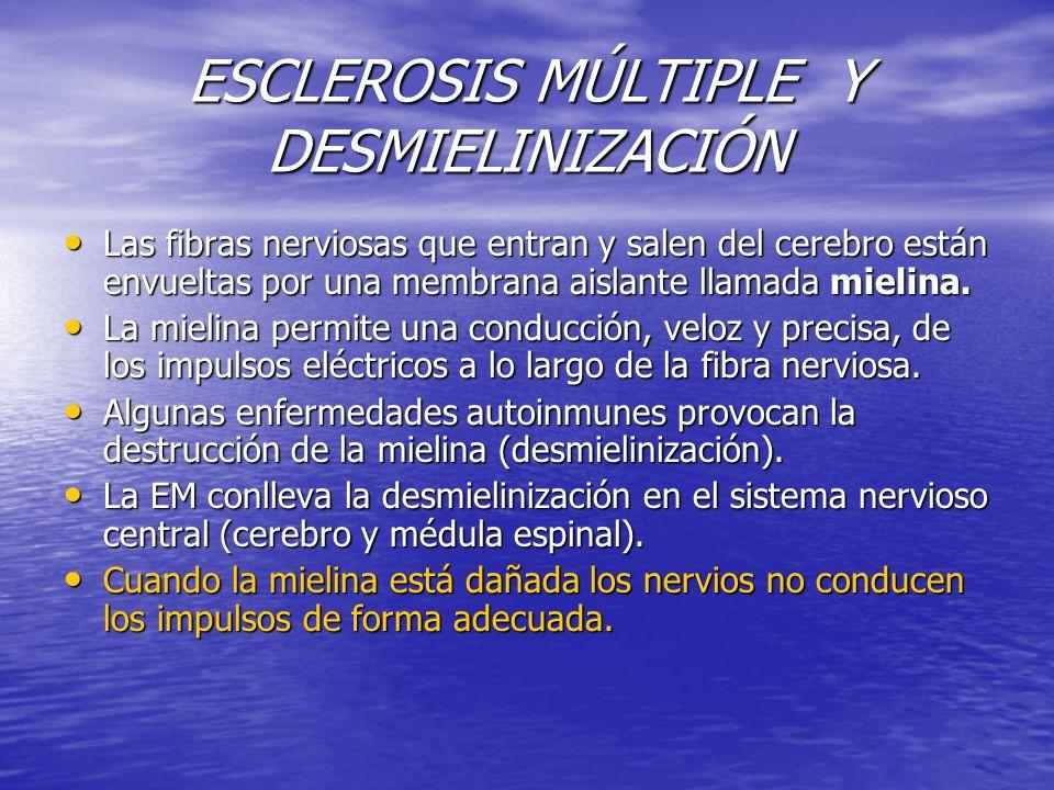 ESCLEROSIS MÚLTIPLE Y DESMIELINIZACIÓN Las fibras nerviosas que entran y salen del cerebro están envueltas por una membrana aislante llamada mielina.