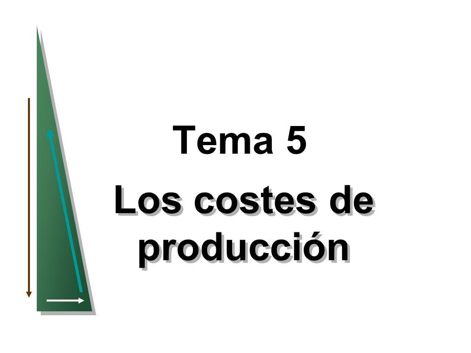 22 Las curvas de costes de una empresa Producción Coste (dólares al año) 100 200 300 400 012345678910111213 CV El coste variable aumenta según la producción y la tasa varía dependiendo de si los rendimientos son crecientes o decrecientes CT El coste total es la suma vertical de CF y CV.