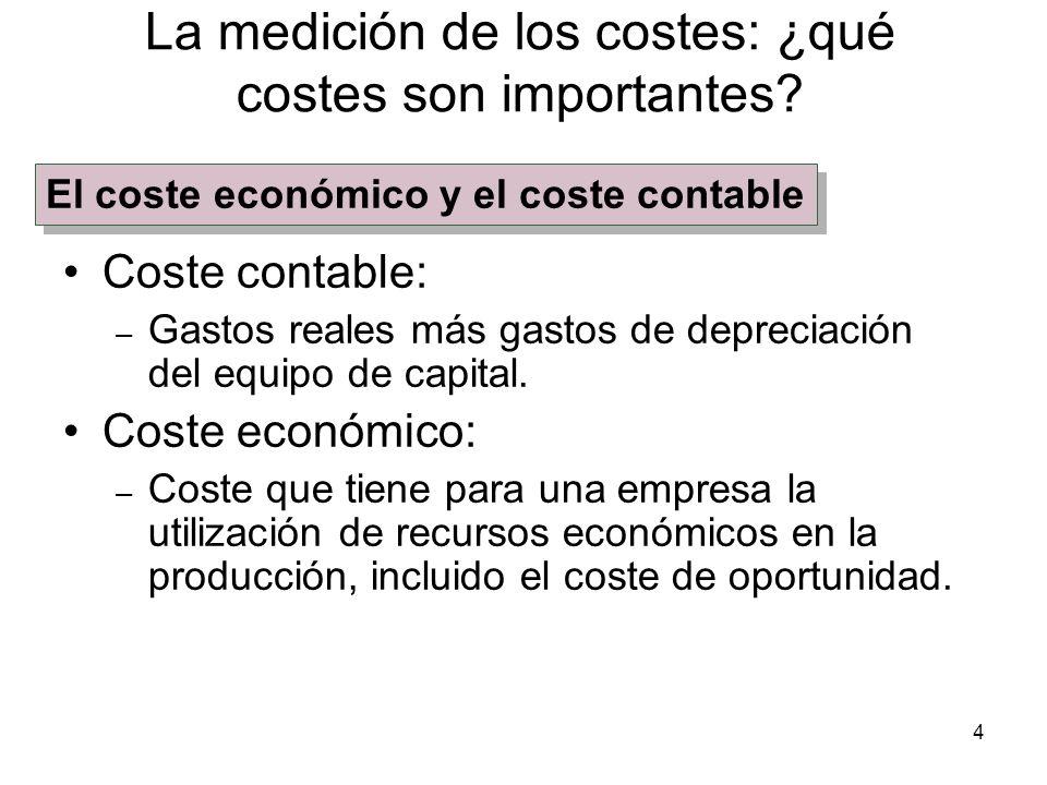 4 La medición de los costes: ¿qué costes son importantes? Coste contable: – Gastos reales más gastos de depreciación del equipo de capital. Coste econ