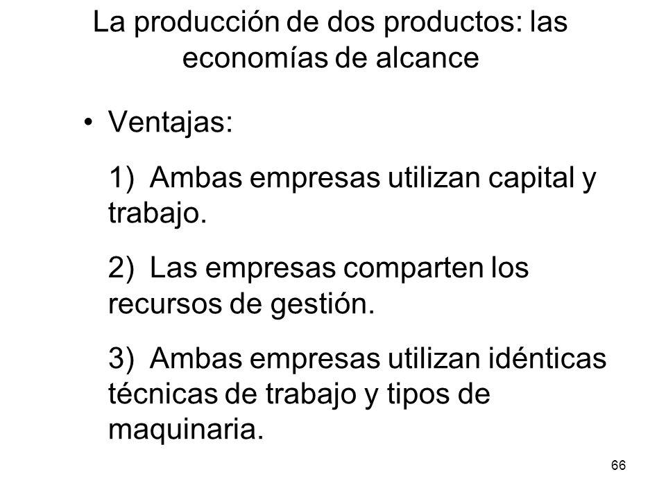 66 Ventajas: 1)Ambas empresas utilizan capital y trabajo. 2)Las empresas comparten los recursos de gestión. 3)Ambas empresas utilizan idénticas técnic
