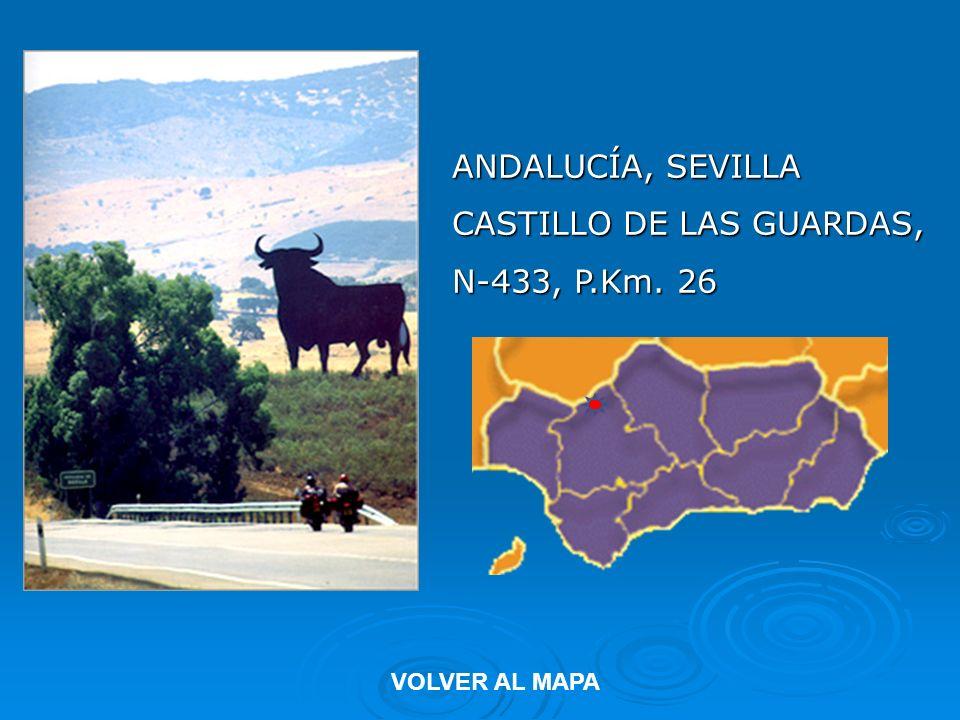 ANDALUCÍA, SEVILLA CASTILLO DE LAS GUARDAS, N-433, P.Km. 26 VOLVER AL MAPA