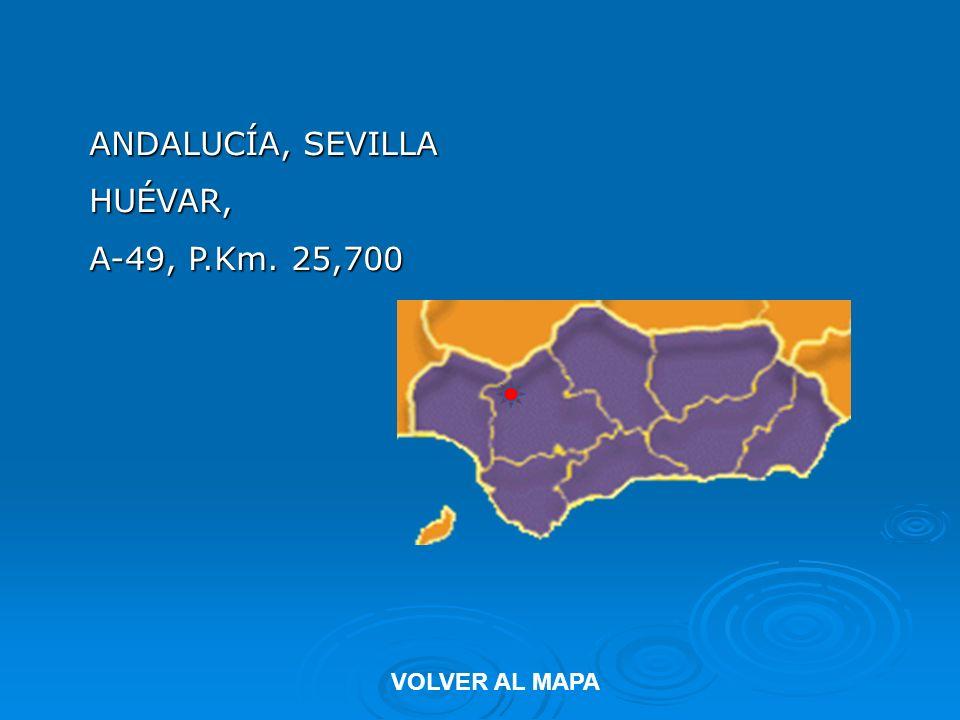 ANDALUCÍA, SEVILLA HUÉVAR, A-49, P.Km. 25,700 VOLVER AL MAPA