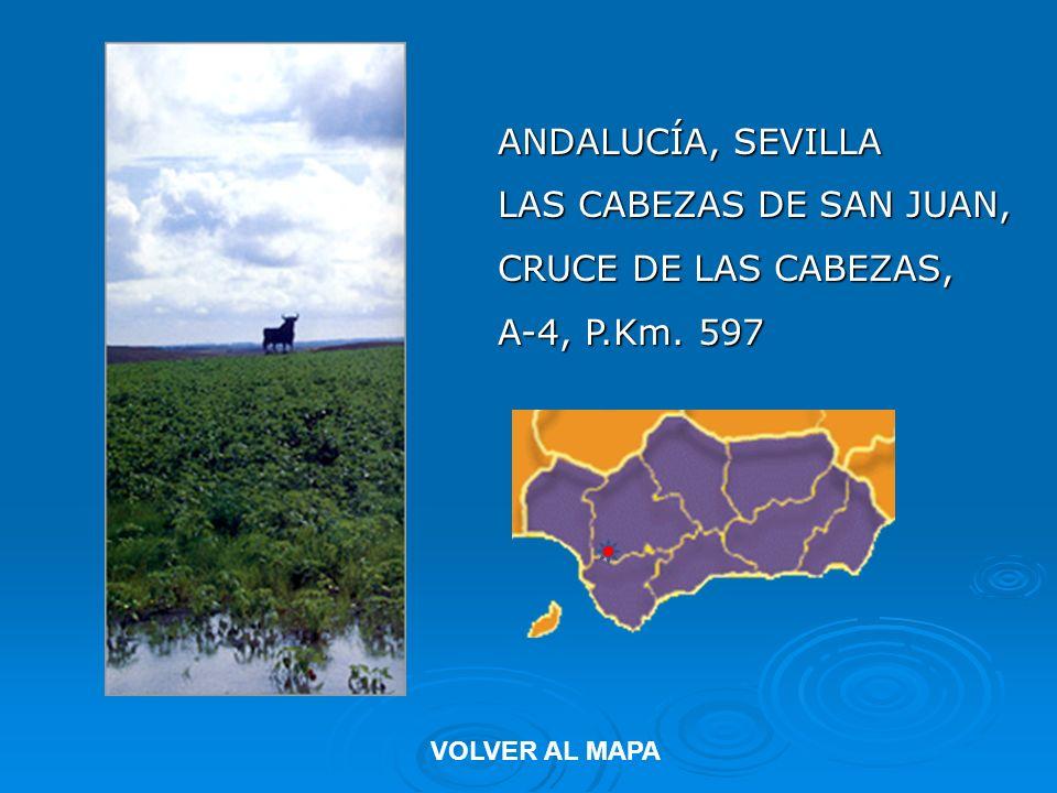 ANDALUCÍA, SEVILLA LAS CABEZAS DE SAN JUAN, CRUCE DE LAS CABEZAS, A-4, P.Km. 597 VOLVER AL MAPA