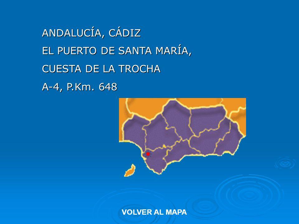 ANDALUCÍA, CÁDIZ EL PUERTO DE SANTA MARÍA, CUESTA DE LA TROCHA A-4, P.Km. 648 VOLVER AL MAPA