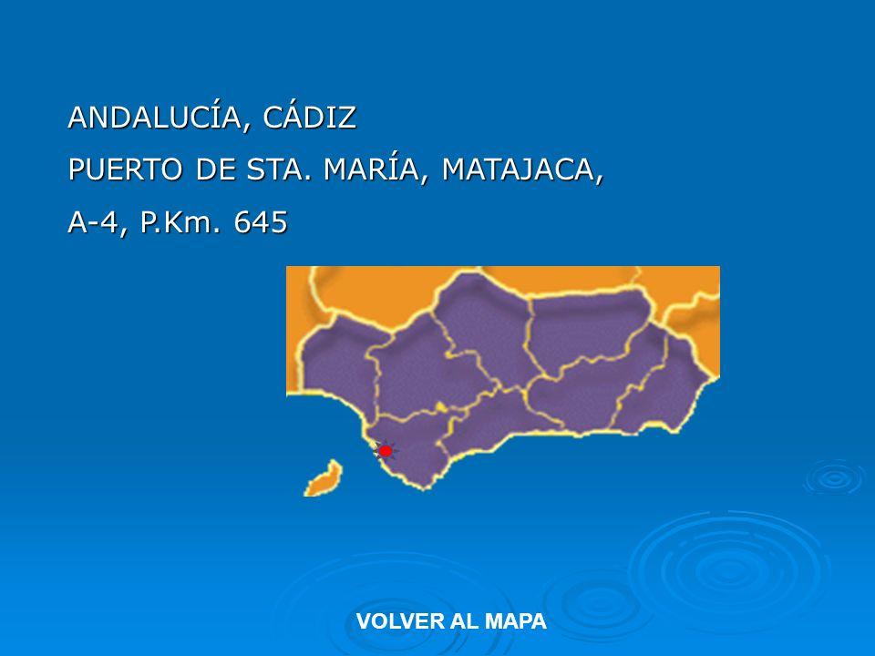 ANDALUCÍA, CÁDIZ PUERTO DE STA. MARÍA, MATAJACA, A-4, P.Km. 645 VOLVER AL MAPA