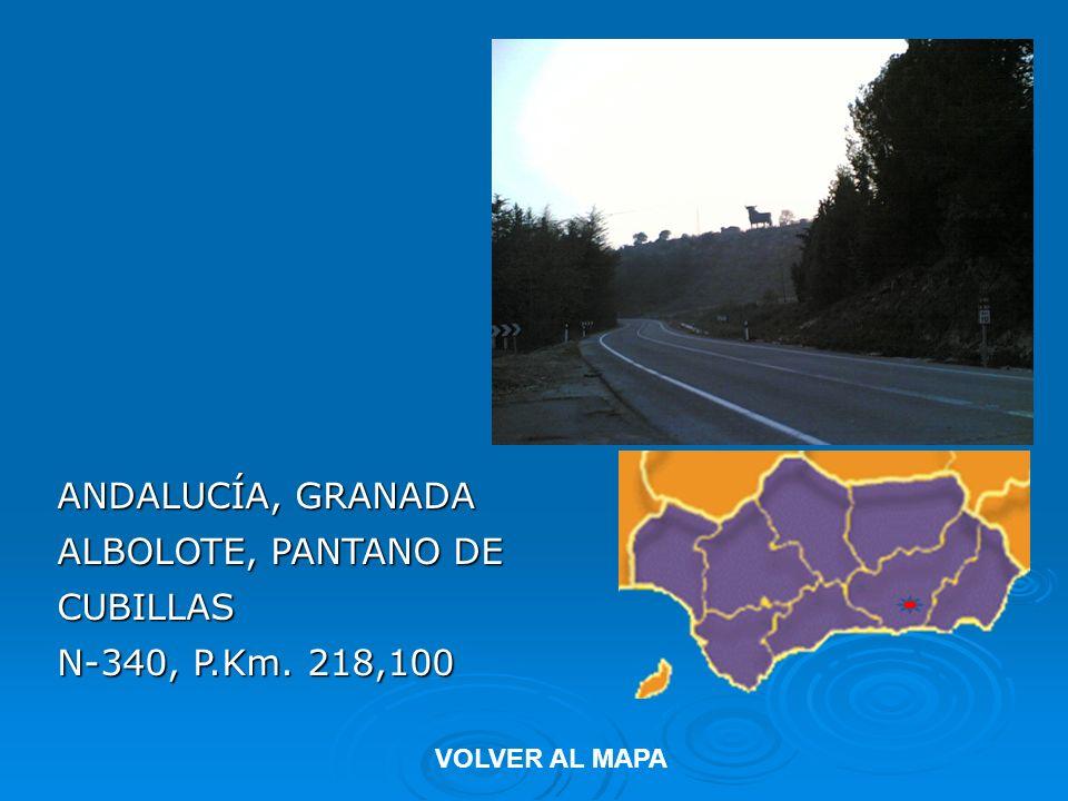 ANDALUCÍA, GRANADA ALBOLOTE, PANTANO DE CUBILLAS N-340, P.Km. 218,100 VOLVER AL MAPA