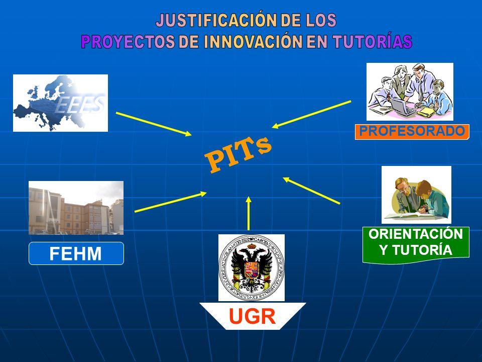 PITs ORIENTACIÓN Y TUTORÍA PROFESORADO UGR FEHM