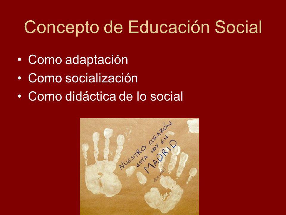 Concepto de Educación Social Como adaptación Como socialización Como didáctica de lo social