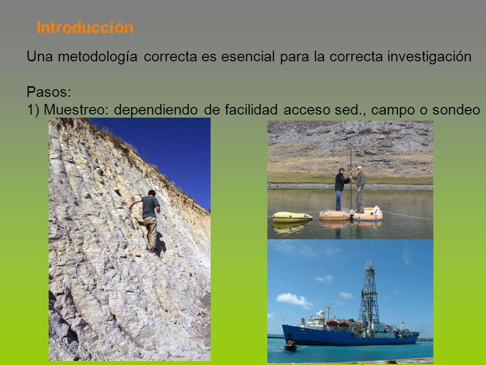 Introducción Una metodología correcta es esencial para la correcta investigación Pasos: 1) Muestreo: dependiendo de facilidad acceso sed., campo o son