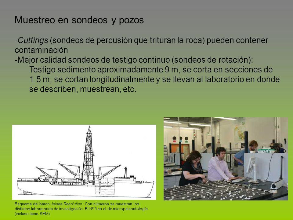 Esquema del barco Joides Resolution. Con números se muestran los distintos laboratorios de investigación. El Nº 5 es el de micropaleontología (incluso