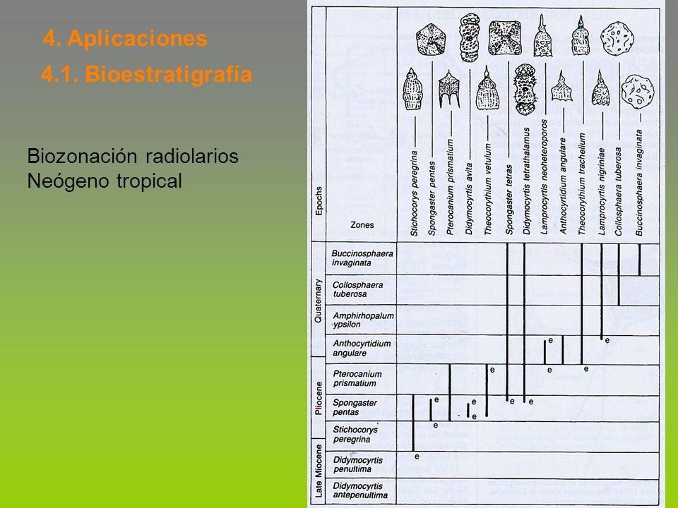 4. Aplicaciones 4.1. Bioestratigrafía Biozonación radiolarios Neógeno tropical