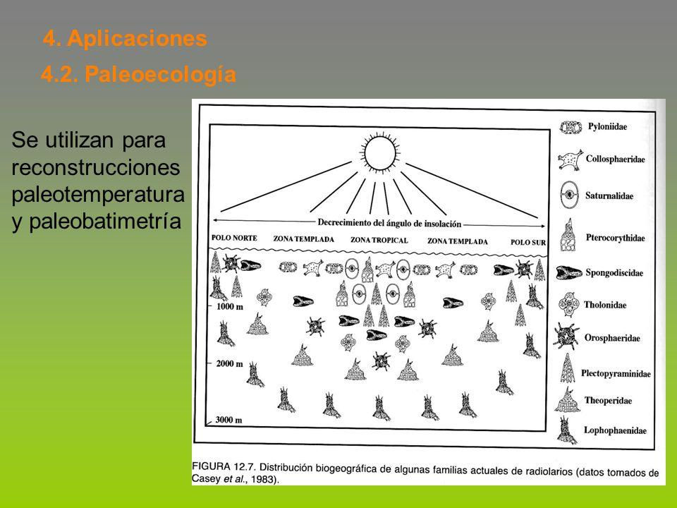 4. Aplicaciones 4.2. Paleoecología Se utilizan para reconstrucciones paleotemperatura y paleobatimetría