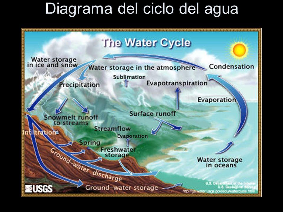 La imagen nos muestra un diagrama del ciclo del agua.