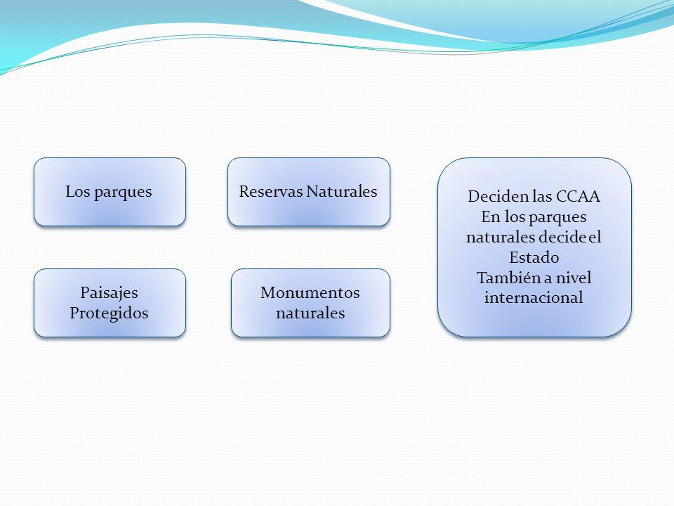 Los parques Reservas Naturales Monumentos naturales Paisajes Protegidos Deciden las CCAA En los parques naturales decide el Estado También a nivel int