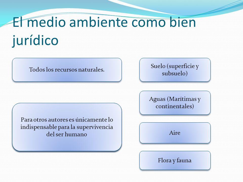 El medio ambiente como bien jurídico Todos los recursos naturales. Suelo (superficie y subsuelo) Aguas (Marítimas y continentales) Aire Flora y fauna