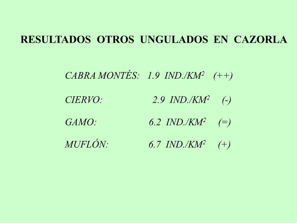 CABRA MONTÉS: 1.9 IND./KM 2 (++) RESULTADOS OTROS UNGULADOS EN CAZORLA CIERVO: 2.9 IND./KM 2 (-) GAMO: 6.2 IND./KM 2 (=) MUFLÓN: 6.7 IND./KM 2 (+)