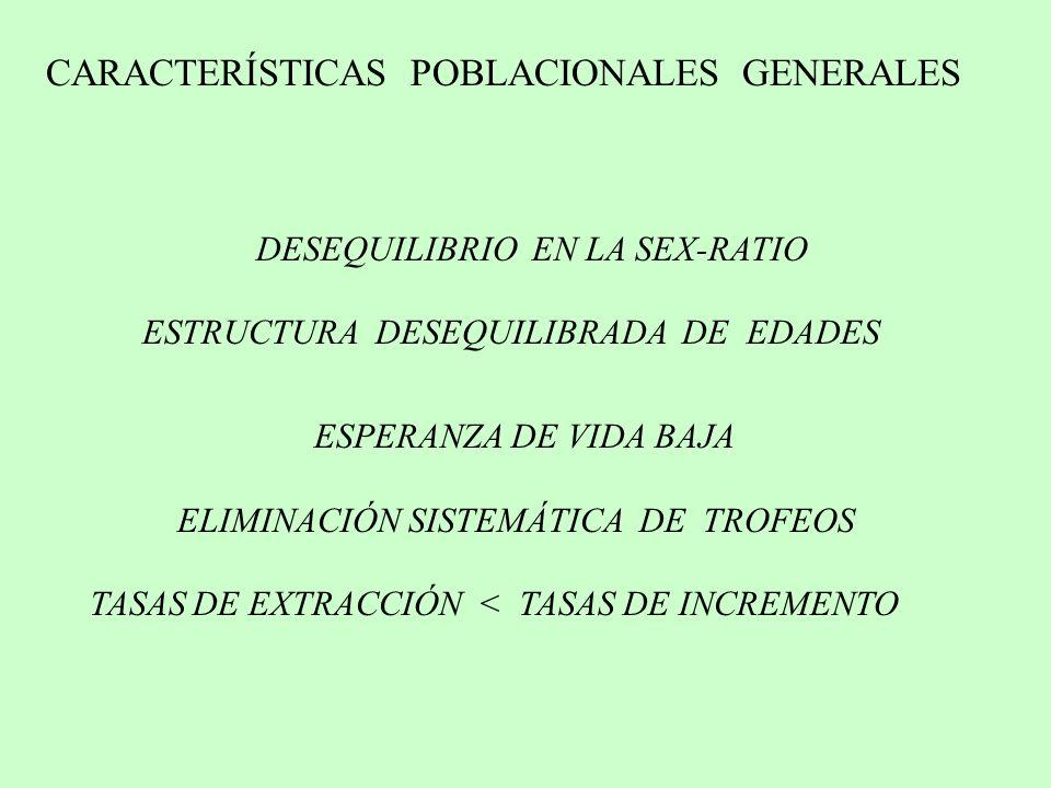 DESEQUILIBRIO EN LA SEX-RATIO ESTRUCTURA DESEQUILIBRADA DE EDADES ESPERANZA DE VIDA BAJA ELIMINACIÓN SISTEMÁTICA DE TROFEOS TASAS DE EXTRACCIÓN < TASA