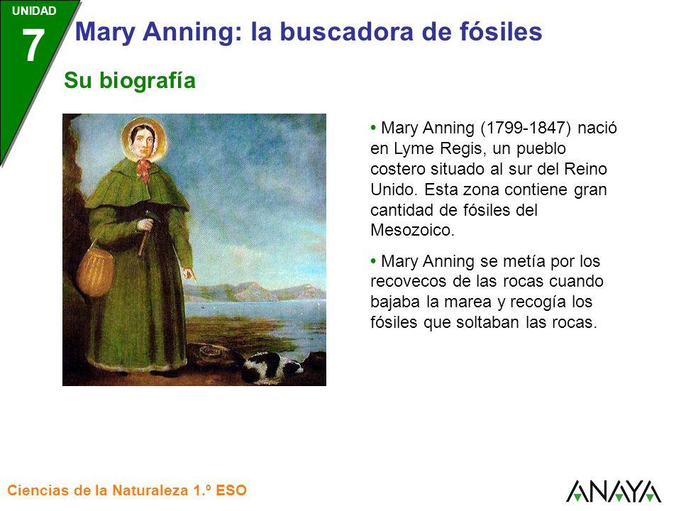 UNIDAD 3 Ciencias de la Naturaleza 1.º ESO UNIDAD 7 Mary Anning: la buscadora de fósiles Mary Anning (1799-1847) nació en Lyme Regis, un pueblo coster