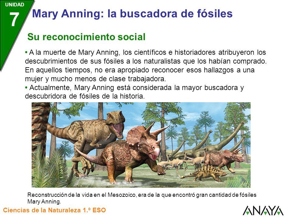 UNIDAD 3 Ciencias de la Naturaleza 1.º ESO UNIDAD 7 Mary Anning: la buscadora de fósiles A la muerte de Mary Anning, los científicos e historiadores a