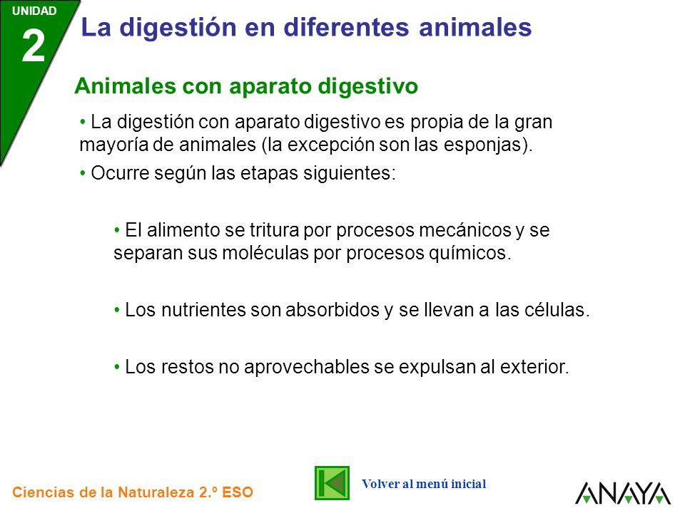 UNIDAD 2 La digestión en diferentes animales Ciencias de la Naturaleza 2.º ESO La digestión con aparato digestivo es propia de la gran mayoría de anim