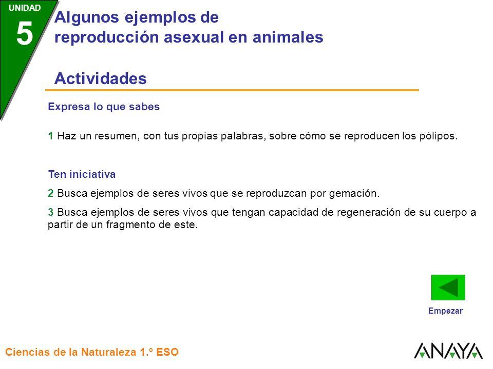 UNIDAD 3 Algunos ejemplos de reproducción asexual en animales Ciencias de la Naturaleza 1.º ESO UNIDAD 5 Expresa lo que sabes 1 Haz un resumen, con tu