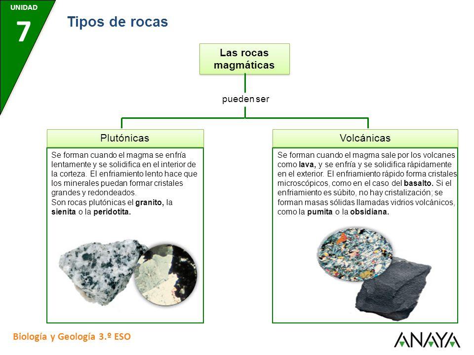 Las rocas magmáticas pueden ser Plutónicas Se forman cuando el magma se enfría lentamente y se solidifica en el interior de la corteza. El enfriamient