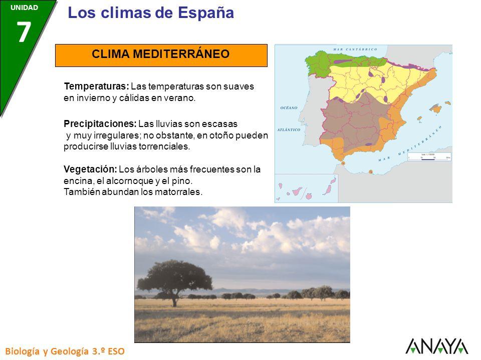 CLIMA MEDITERRÁNEO Temperaturas: Las temperaturas son suaves en invierno y cálidas en verano. Precipitaciones: Las lluvias son escasas y muy irregular