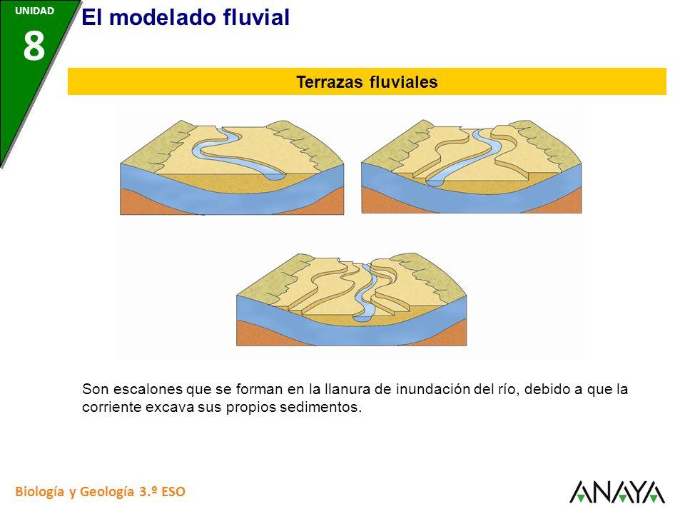 Biología y Geología 3.º ESO Son escalones que se forman en la llanura de inundación del río, debido a que la corriente excava sus propios sedimentos.