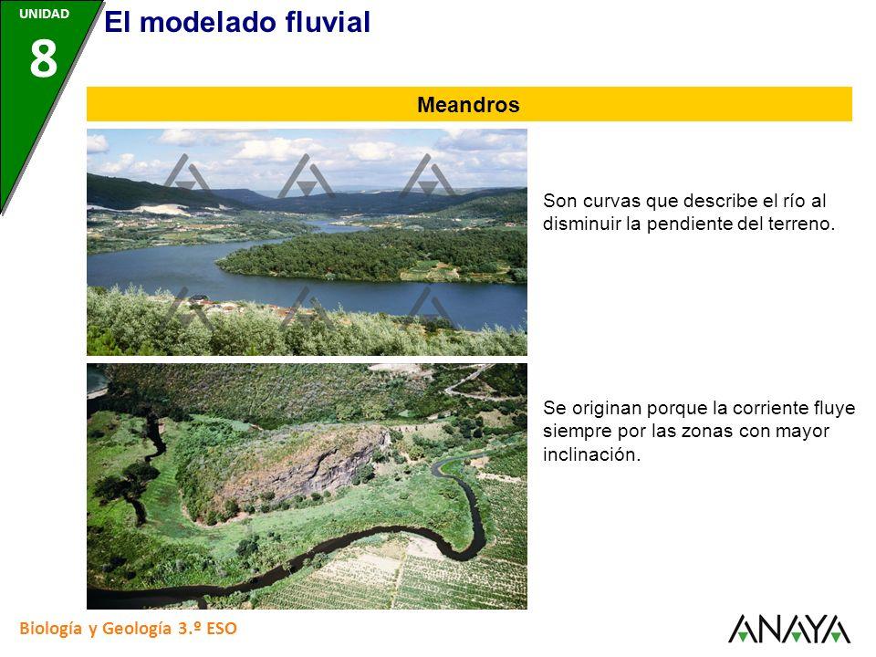 Biología y Geología 3.º ESO Son curvas que describe el río al disminuir la pendiente del terreno. Meandros UNIDAD 8 Se originan porque la corriente fl