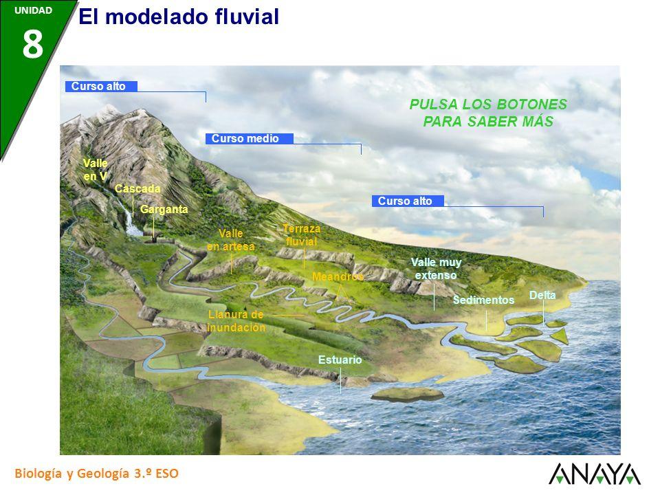 Curso alto Curso medio Valle en V Cascada Garganta Valle en artesa Llanura de inundación Terraza fluvial Meandros Valle muy extenso Sedimentos Delta E