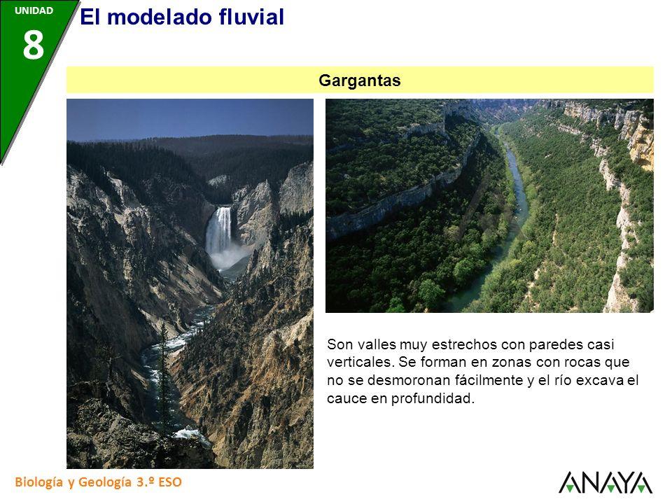 Biología y Geología 3.º ESO Son valles muy estrechos con paredes casi verticales. Se forman en zonas con rocas que no se desmoronan fácilmente y el rí