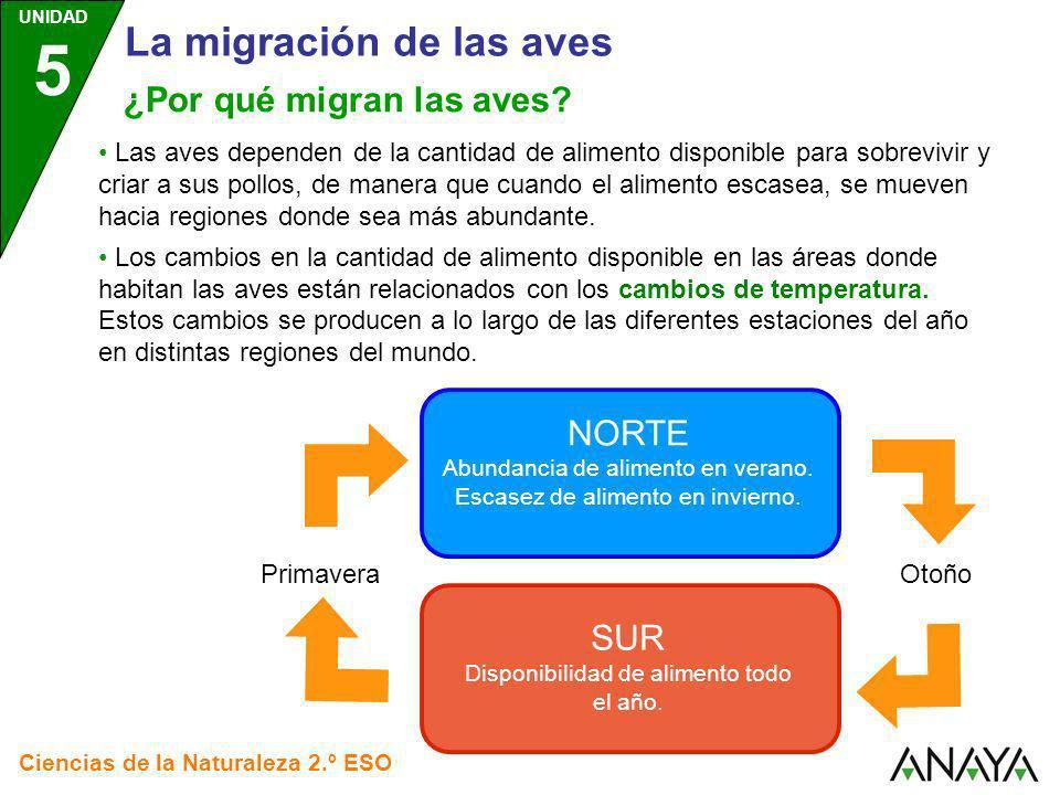 UNIDAD 5 Ciencias de la Naturaleza 2.º ESO ¿Por qué migran las aves? Las aves dependen de la cantidad de alimento disponible para sobrevivir y criar a