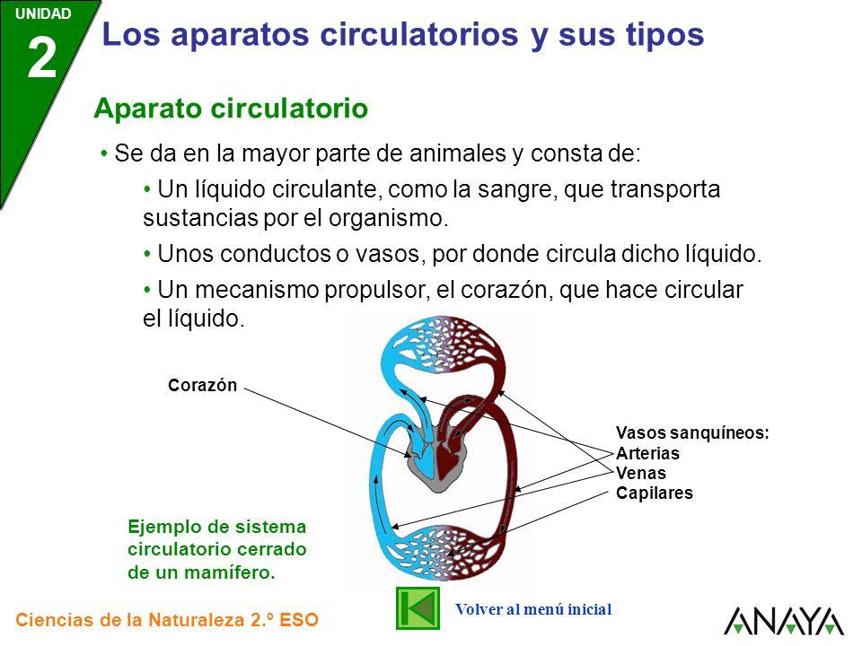 UNIDAD 2 Los aparatos circulatorios y sus tipos Ciencias de la Naturaleza 2.º ESO Se da en la mayor parte de animales y consta de: Un líquido circulan