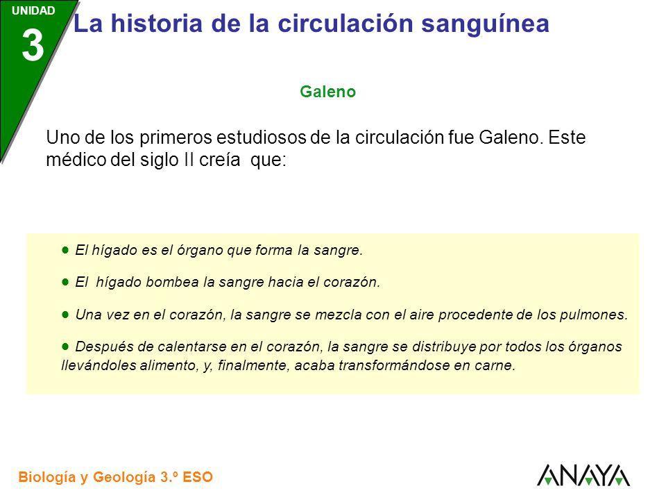 UNIDAD 3 Biología y Geología 3.º ESO UNIDAD 3 La historia de la circulación sanguínea Uno de los primeros estudiosos de la circulación fue Galeno. Est