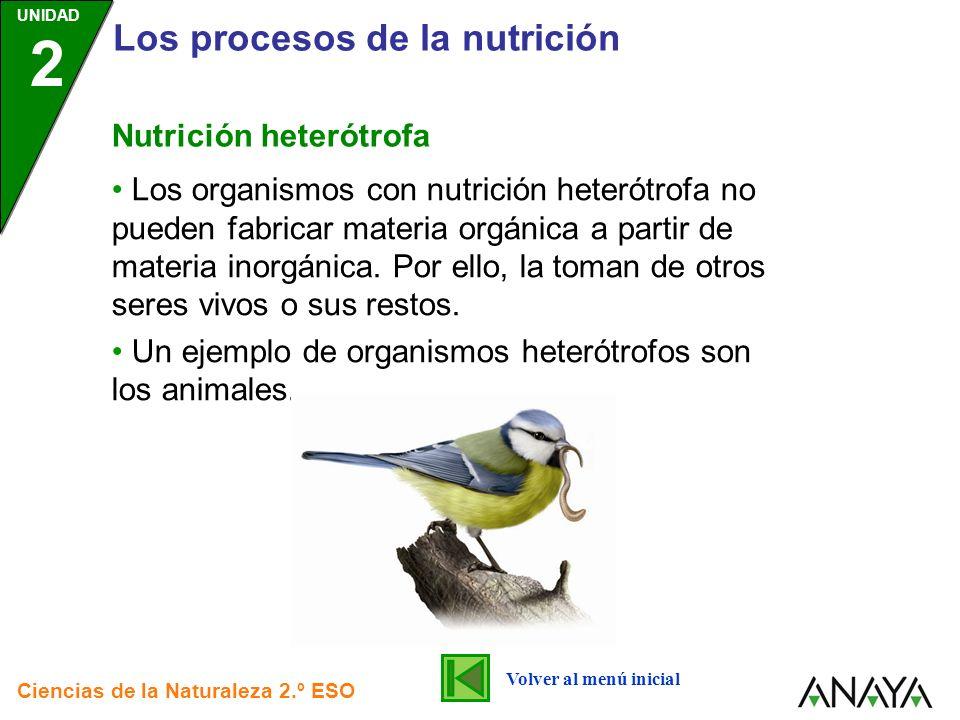 UNIDAD 2 Los procesos de la nutrición Ciencias de la Naturaleza 2.º ESO Nutrición heterótrofa Los organismos con nutrición heterótrofa no pueden fabri