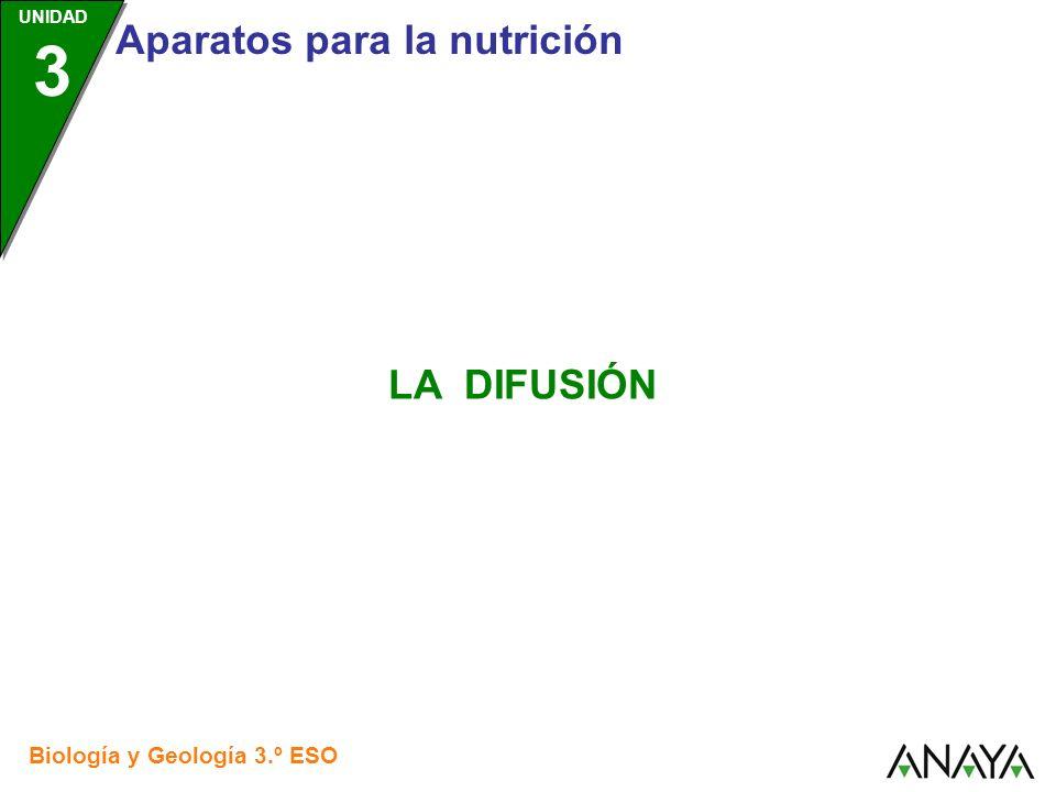 UNIDAD 3 Aparatos para la nutrición Biología y Geología 3.º ESO LA DIFUSIÓN