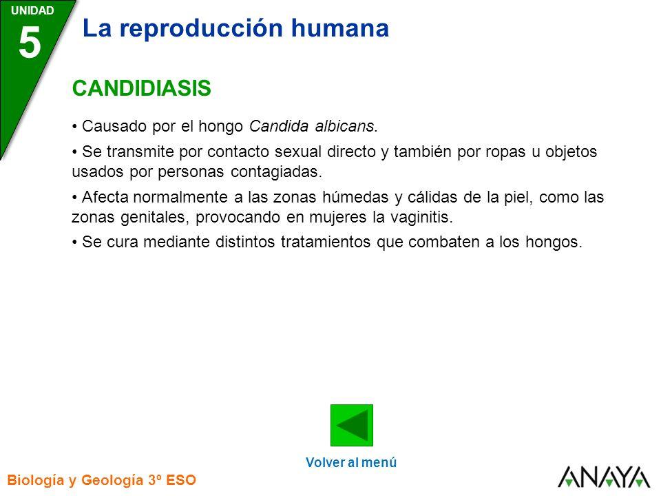 UNIDAD 5 La reproducción humana Biología y Geología 3º ESO CANDIDIASIS Volver al menú Causado por el hongo Candida albicans. Se transmite por contacto