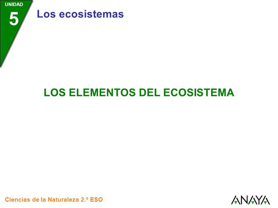 LOS ELEMENTOS DEL ECOSISTEMA Ciencias de la Naturaleza 2.º ESO UNIDAD 5 Los ecosistemas