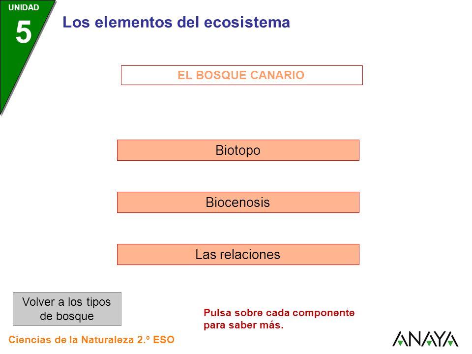 EL BOSQUE CANARIO Biotopo Biocenosis Las relaciones Los elementos del ecosistema Volver a los tipos de bosque Ciencias de la Naturaleza 2.º ESO UNIDAD