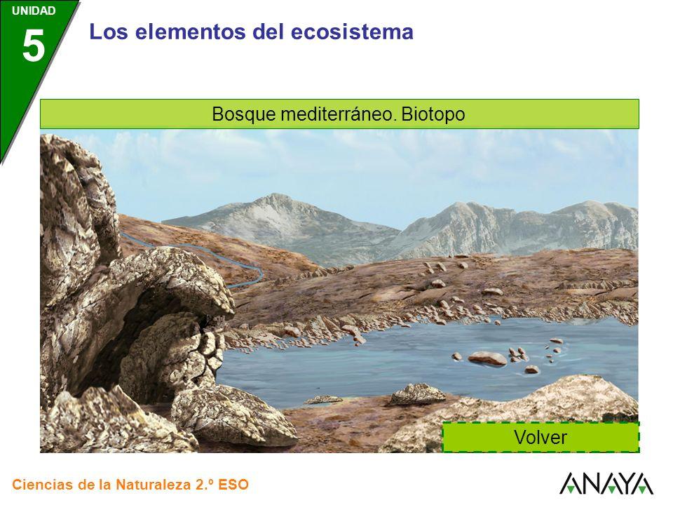 Los elementos del ecosistema Bosque mediterráneo. Biotopo Volver Ciencias de la Naturaleza 2.º ESO UNIDAD 5