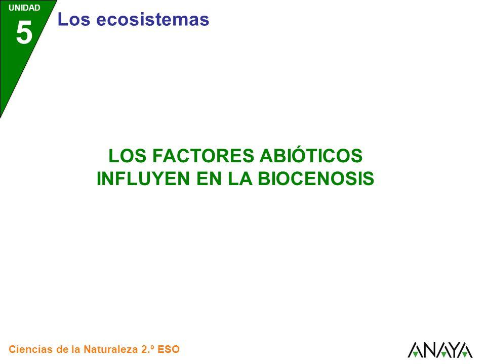 UNIDAD 5 Los ecosistemas Ciencias de la Naturaleza 2.º ESO LOS FACTORES ABIÓTICOS INFLUYEN EN LA BIOCENOSIS