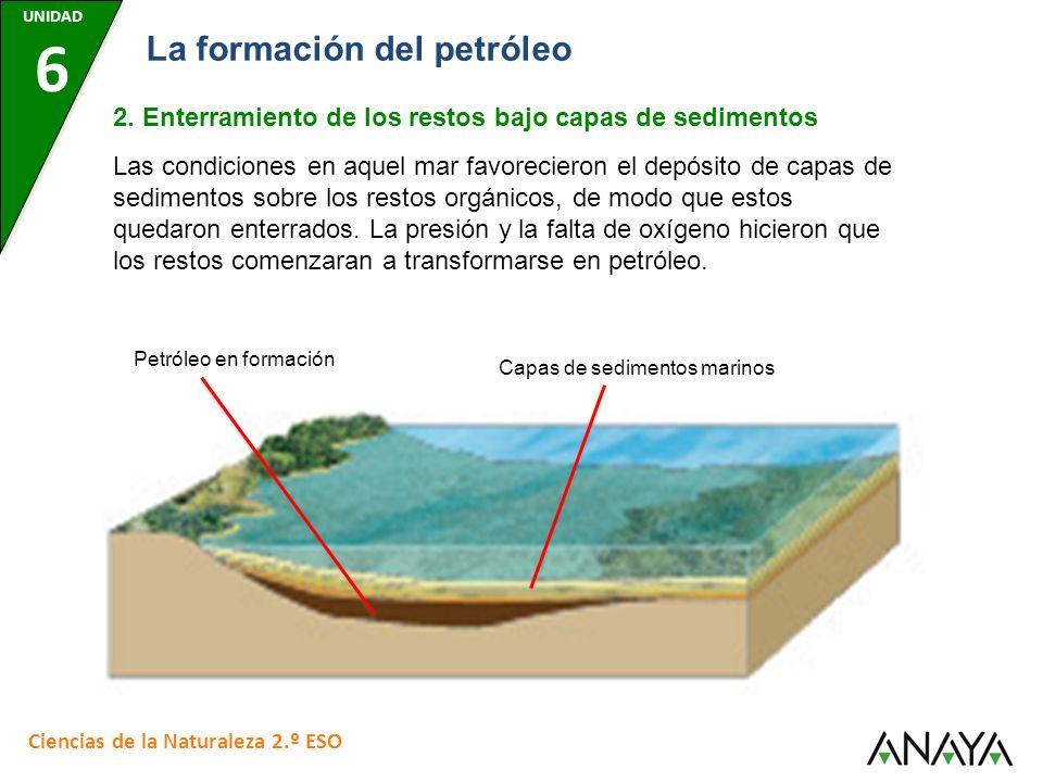 UNIDAD 6 Ciencias de la Naturaleza 2.º ESO La formación del petróleo 2. Enterramiento de los restos bajo capas de sedimentos Las condiciones en aquel