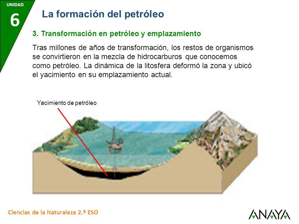 UNIDAD 6 Ciencias de la Naturaleza 2.º ESO La formación del petróleo 3. Transformación en petróleo y emplazamiento Tras millones de años de transforma