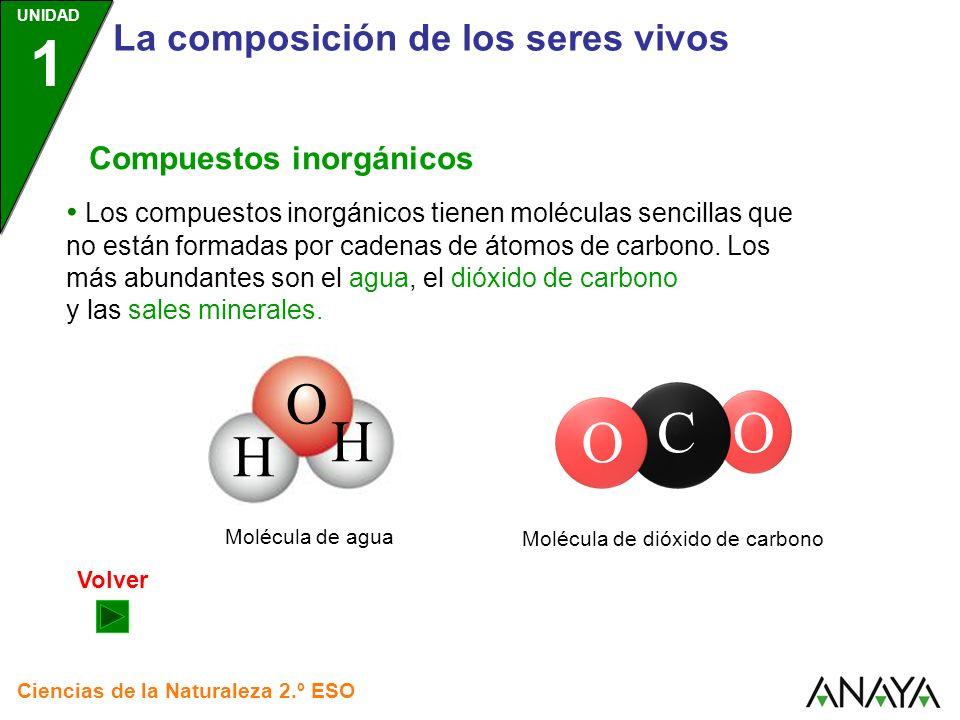 UNIDAD 1 La composición de los seres vivos Ciencias de la Naturaleza 2.º ESO Compuestos inorgánicos Los compuestos inorgánicos tienen moléculas sencillas que no están formadas por cadenas de átomos de carbono.