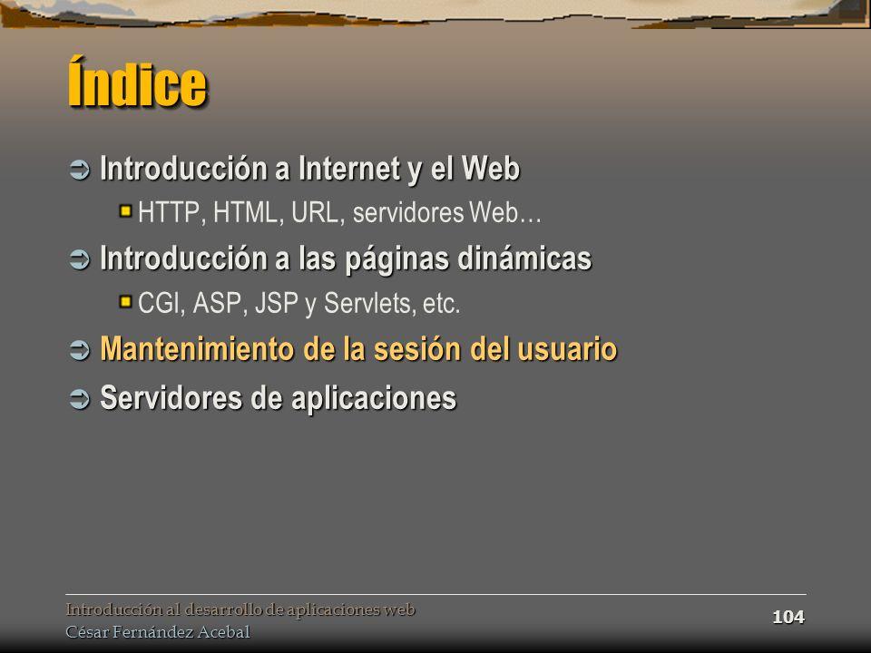 Introducción al desarrollo de aplicaciones web César Fernández Acebal 104 ÍndiceÍndice Introducción a Internet y el Web Introducción a Internet y el W