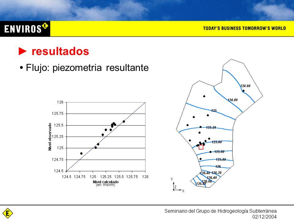 Seminario del Grupo de Hidrogeología Subterránea 02/12/2004 resultados Flujo: piezometria resultante (en msnm)